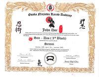 Ninjutsu 11x14 Custom Certificate