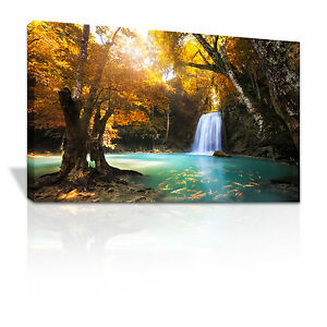 C084 Lush waterfall into pool of Golden Carp framed canvas print xmas gift