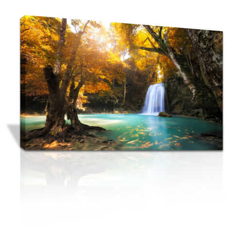 Lush waterfall into pool of Golden Carp framed canvas print xmas gift C084