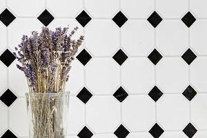Das Bild Wird Geladen Fliesen Mosaik Kueche Bad Keramik Classic Octa Weiss