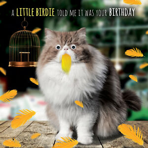 Image Is Loading Cat Birthday Card Little Birdie 3D Goggly Eyes