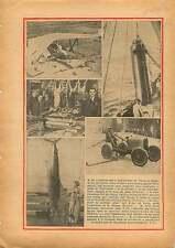 Yeovil Airfield England/Espadon/Gibiers Halles de Paris France 1934 ILLUSTRATION
