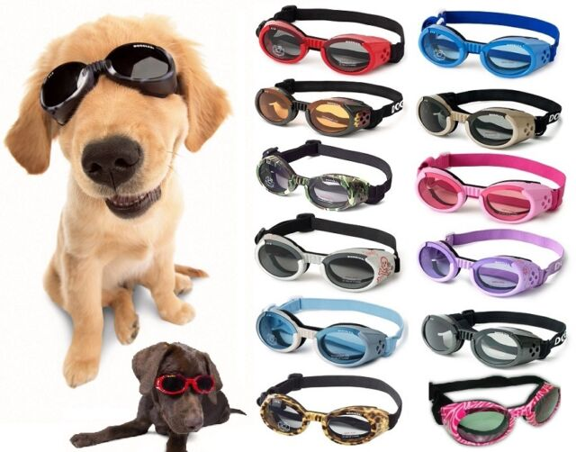 Used Large Skull Crossbones Doggles ILS Dog Sunglasses UV Eye Protection Goggles