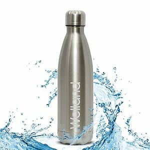 17-oz-Water-Bottle-Vacuum-Insulated-Stainless-Steel-Hot-or-Cold-WELLAND-Silver
