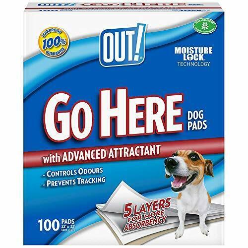 Fuera paquete de 100 ir aquí almohadillas absorbentes perro y cachorro de formación