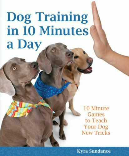 Dog Training in 10 Minutes a Day: 10-Minute Games to Teach Your Dog New Tricks Books