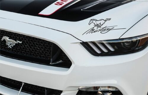 Sticker 2005-2013 GT MUSTANG script and pony signature
