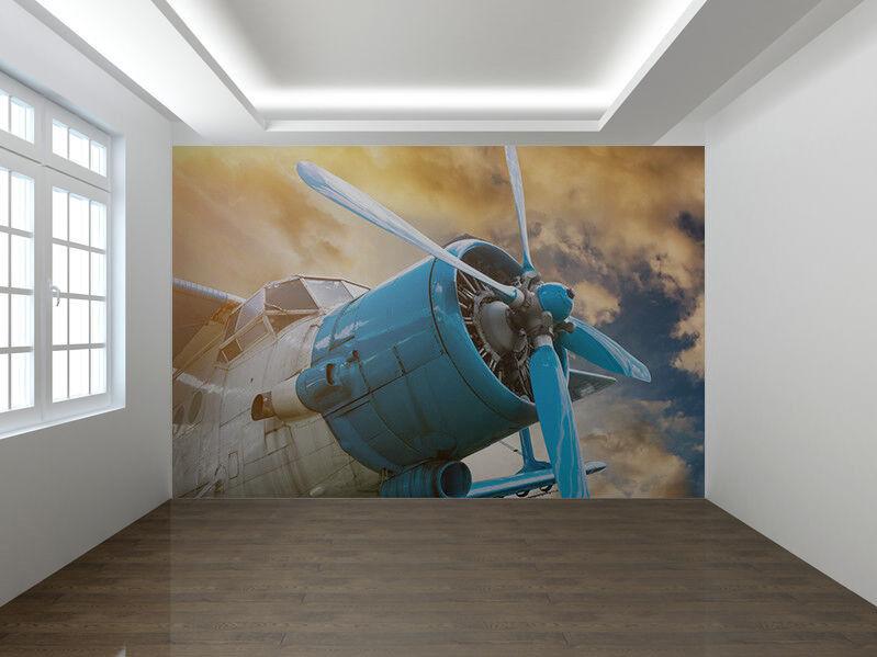 Flugzeug mit Propeller Foto Wandtapete Wandgemälde (76477212)
