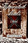 Separated Souls 9780595376322 by Cheryl Schmidt Paperback
