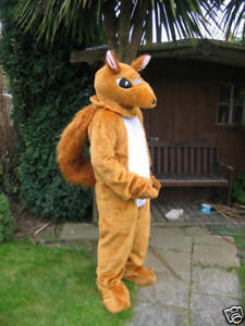 Hire-a-SQUIRREL-Mascot-Costume
