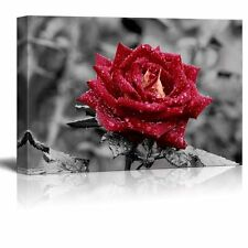 Wall26 - Canvas Prints Wall Art - Red Rose on Grey | Modern Wall Decor - 16 x 24