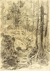 Franz Emil Zeising Bleistiftzeichnung 1875 Various Styles Uttewalder Grund