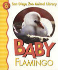 Baby Flamingo by Patricia A. Pingry (Board book, 2004)