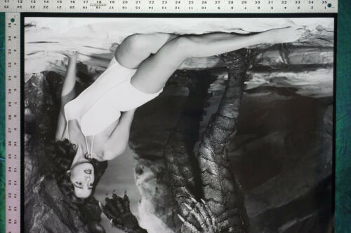 Creature From the Black Lagoon Julie Adams Movie Film Poster 24X36 NEW