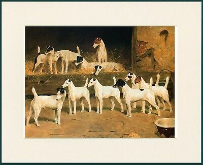 SMOOTH FOX TERRIER DOG GREAT DOG PRINT MOUNTED READY TO FRAME