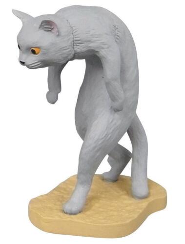 Grey Cat Kitten Stoop Capsule Desktop Figure Part 1
