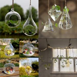 Glass Clear Flower Planter Vase Home Garden Decor Wall Hang