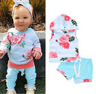 Cute Toddler Baby Girls Summer Hooded Tops Shorts 2PCS Outfits Set Clothes 0-3T