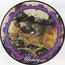 FABULOUS POODLES- PYE PICTURE DISC ROCK 45RPM(ENGLAND) WORKSHY/TOYTOWN PEOPLE M-