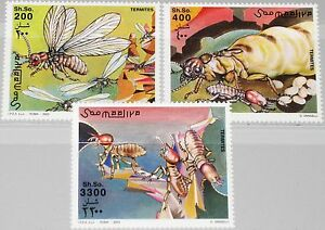 Somalia-2003-Unlisted-set-insectos-insects-hormigas-sistema-fauna-mnh
