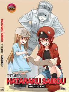DVD-Anime-Hataraku-Saibou-Cells-at-Work-Complete-Series-1-13-English-Subtitle