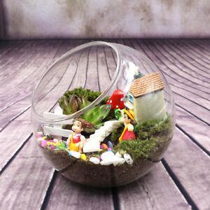 Globe-Glass-Ball-Planter-Vase-Flower-Plant-Pot-Terrarium-Container-Tabletop