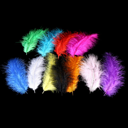 50pcs//set turkey feathers 10-15cm chicken plumes for carnival diy craft decor SE