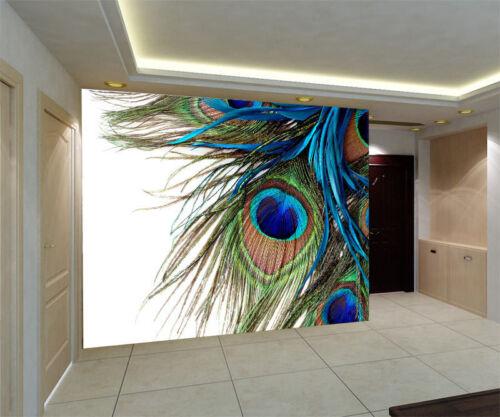 Peacock Feather Clipart Art 3D Full Wall Mural Photo Wallpaper Home Decal Kids