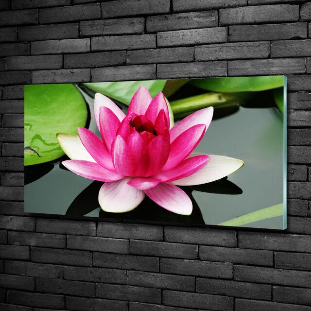 Glas-Bild Wandbilder Druck auf Glas 100x50 Deko Blumen /& Pflanzen Lotusblumen