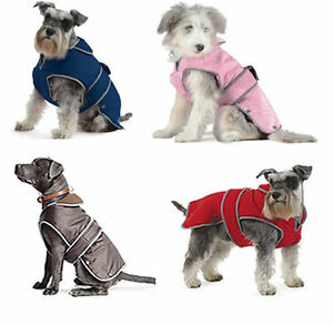DOG-COAT-ANCOL-MUDDY-PAWS-STORMGUARD-amp-CITY-CHEST-PROTECTORS-for-your-pet