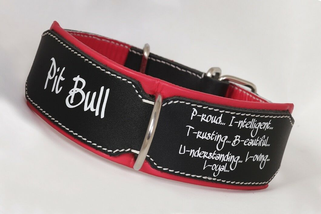 Pitbull Collar Leather dog collar Hand Stitched Heavy duty leather dog collar