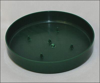 7 Ciotola Olympia Verde Diametro 25 Cm Sapore Aromatico
