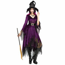 Morris Costumes Women/'s Witch /& Sorceress Complete Outfit XL IC1022XL