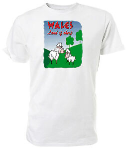 WALES, Land of Sheep T shirt - Choice of size & colours.