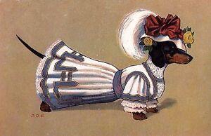 Dachshund Girl L - MATTED Dog Art Print - German / NEW