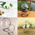 Metal Lantern Stand Hanging Candlestick Glass Globe Desk Candle Ornament Holder