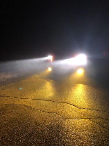 2x H16 64219 19W Yellow Fog Lights Toyota Tacoma