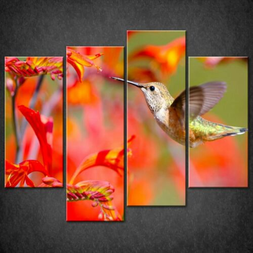 RED FLOWERS RUFOUS HUMMINGBIRD CASCADE CANVAS WALL ART PRINT READY TO HANG