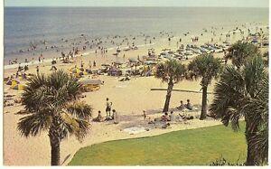 Image Is Loading Myrtle Beach Sc 1960s Scene Postcard Palm