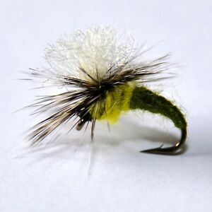 12 Winged Sedge Dry Trout Flyfishing Flies 6 patterns by  Dragonflies
