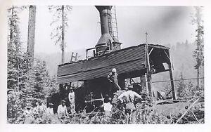 Yard-Logging-Donkey-7-25x4-5-B-amp-W-Photo-0344