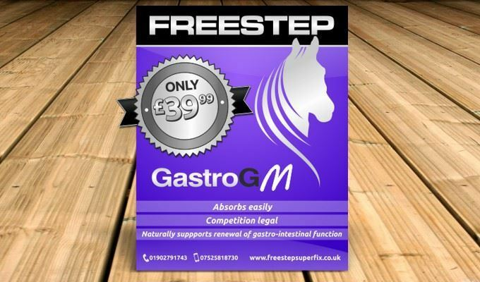 Freestep Gastro GM - Supplement for horses and ponies - 500g - BN