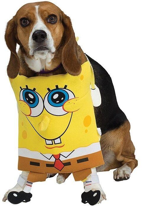 Haustier Hund Katze Spongebob Schwammkopf Halloween Kleidung Kostüm Kleid Outfit  | Tragen-wider
