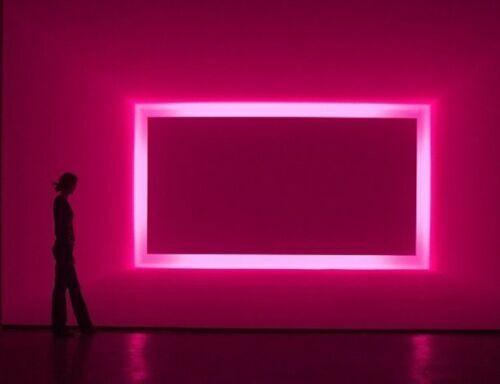 164ft 12V Pink Flex LED Neon Rope Light Strip 2835 SMD Store Sign Logo DIY Decor