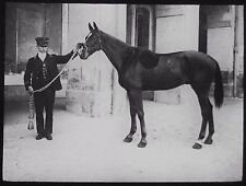 Glass Magic Lantern Slide THE KINGS HORSE C1900 PHOTO  KING EDWARD VII ? RACING