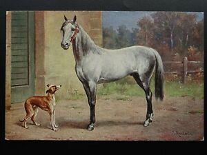 Horse-amp-Dog-Theme-PORTRAIT-of-HORSE-amp-DOG-Artist-Carl-Reichert-Old-Postcard