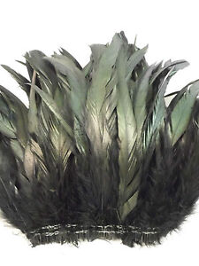 "50+ BLACK IRIDESCENT COQUE ROOSTER TAILS CRAFT FEATHER 8""-10""L"
