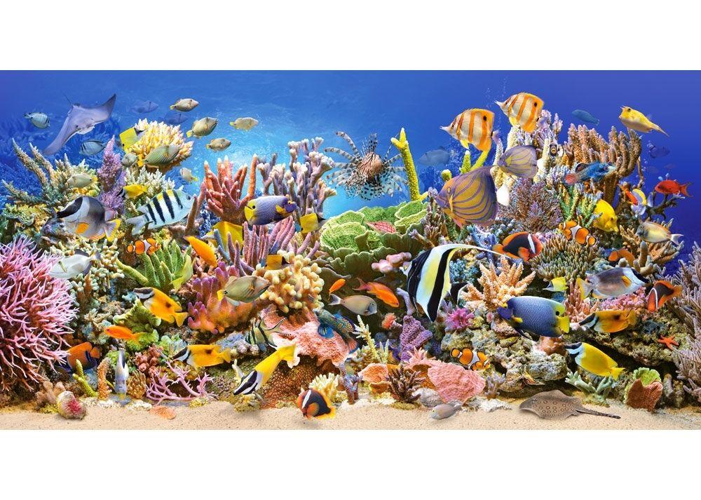 4000 pcs Puzzle Vie Sous-marine (Art) Castorland C-400089