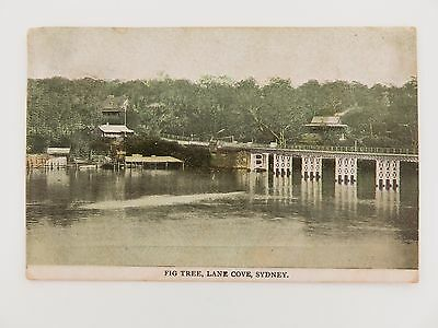 1907 LANE COVE , SYDNEY COLOUR POSTCARD