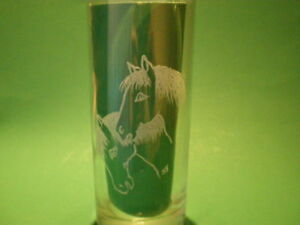 Personalised Gifts Freehand Engraved Glass Tumbler Horse / Pony Name Added FREE